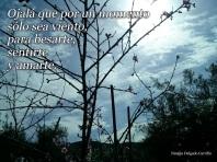 Ser viento